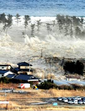 Japanese 8.9 Mw Earthquake and Tsunami