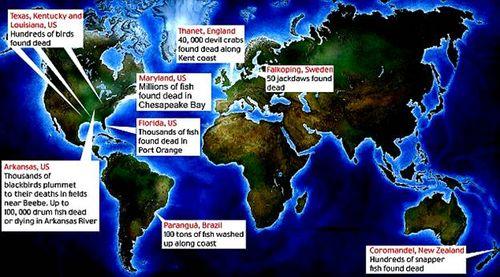 Global Mass Extinctions