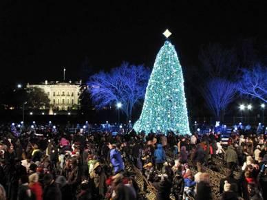 American Christmas Tree 2010