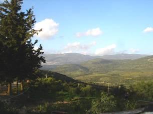 Sacred Forests - Holy Land of Israel