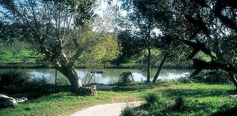 Neot Kedumim 600 Acre Botanical Garden