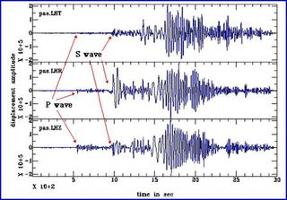 Seismogram True Earthquake