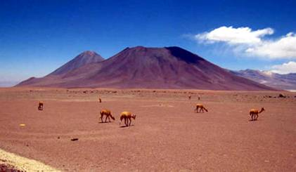 Atacama Desert near San Pedro, Chili
