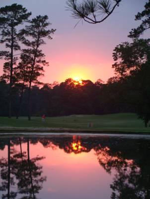 Sunset at Wilding Ponds 1