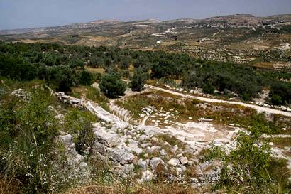 Sebaste Capital of King Omri 1