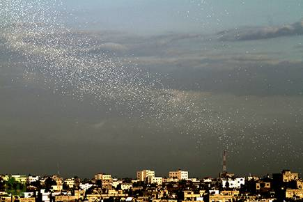 Warning leaflets falling on the Gaza Strip