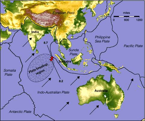 Indo-Australian Plate 5