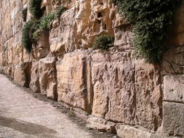 Quarried Stones on King Herod's Temple Mount