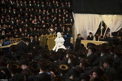 Hasidic Polish Belz Dynastic Wedding015