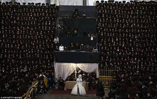 Hasidic Polish Belz Dynastic Wedding017