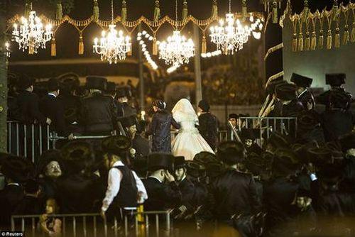 Hasidic Polish Belz Dynastic Wedding013