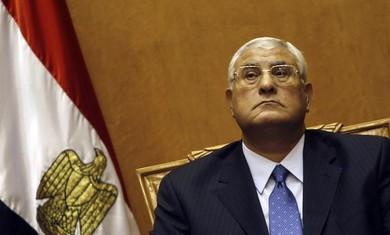 Egyptian Interim President Adli Mansour