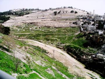 King David's Palace-Kidron Valley01