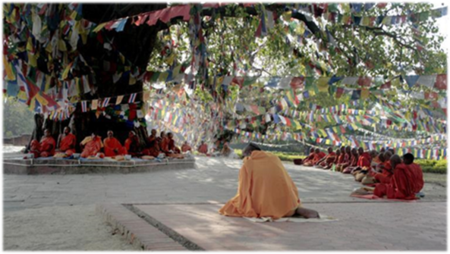 Buddhist Monk Lumbini Bodhi