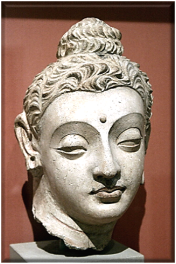 Head of the Buddha from Hadda