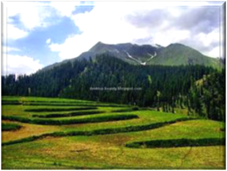 Hill station of Lalazar near the Kashmir Valley
