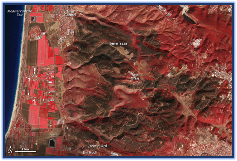 NASA Terra Satellite image in Israel's Forest Fire in 2010