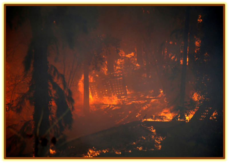Consummation of the Forest Fires in Israel