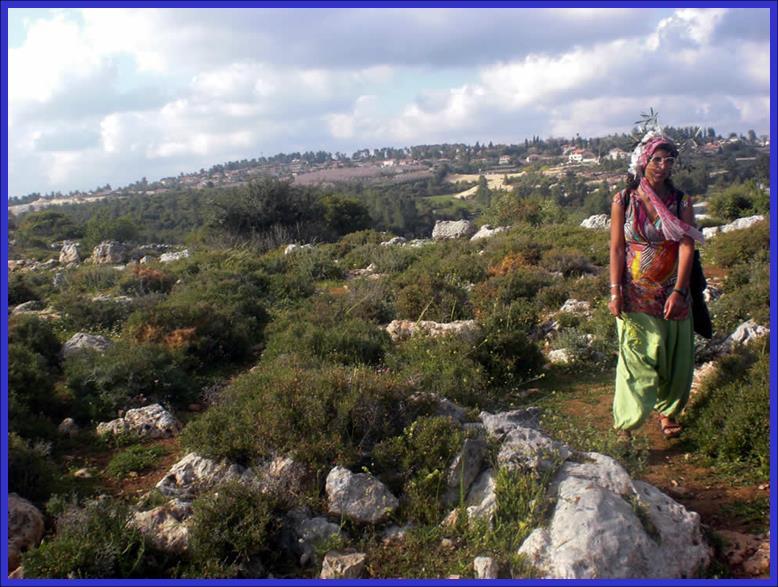 The Mountainous Hills around Nes-Harim