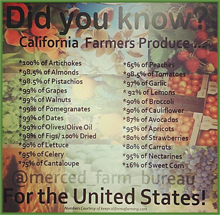 California the Bread-basket of America