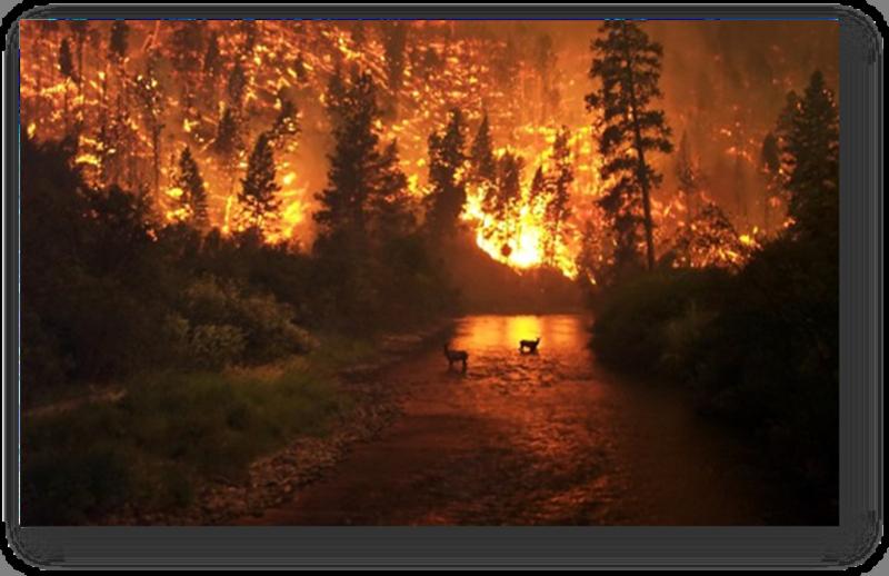 Burning Inferno torches Blue Creek near Walla Walla, Wash