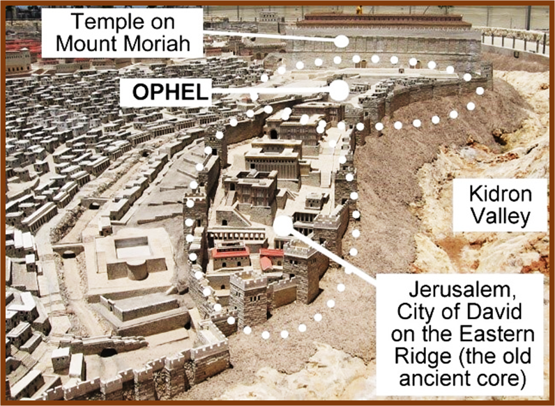Jerusalem, the City of King David - 1