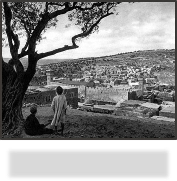 The City of Hebron in 1929, the Year of the Massacre of the Jews