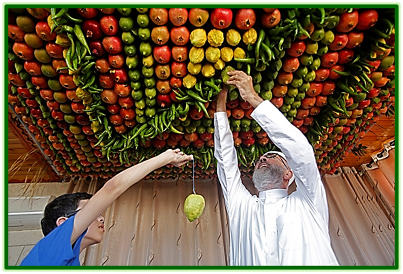 Preparing a Sukkah for the Festival of Sukkot