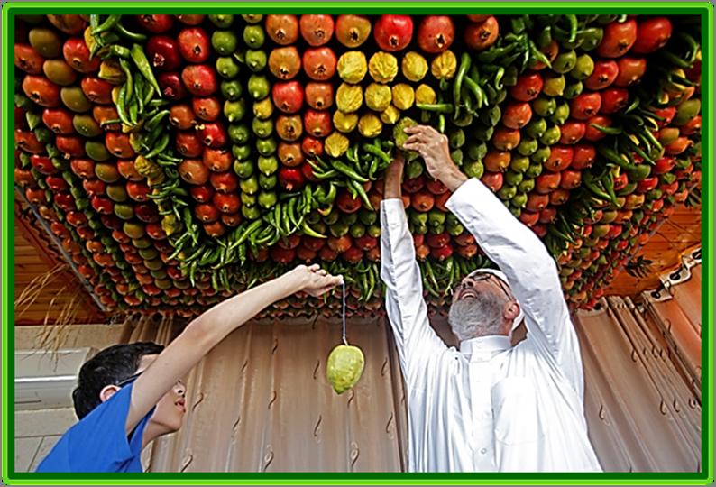 Preparing a Sukkah for the Festival of Sukkot