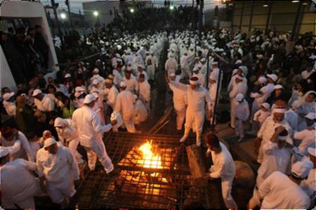 Samaritans preparing the Korban Pesach Lambs