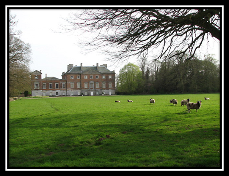 """Jacob Trophy Sheep"" at Mannington Hall & Wolterton Hall Park"