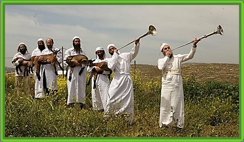 Kohanim Pesach  lamb sacrifice