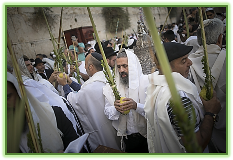 Jewish worshippers wave Lulav and Etrog at the Western Wall