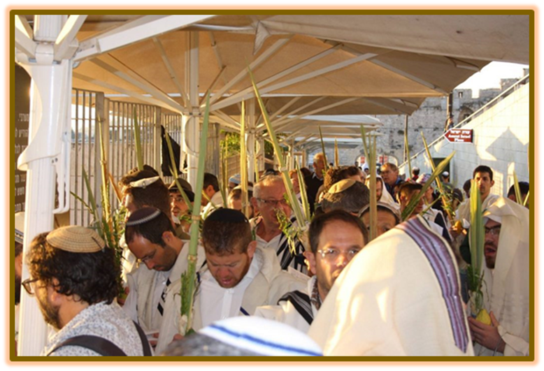 "Religious Jewish men ""Four Species"" of Sukkot Mughrabi gate"