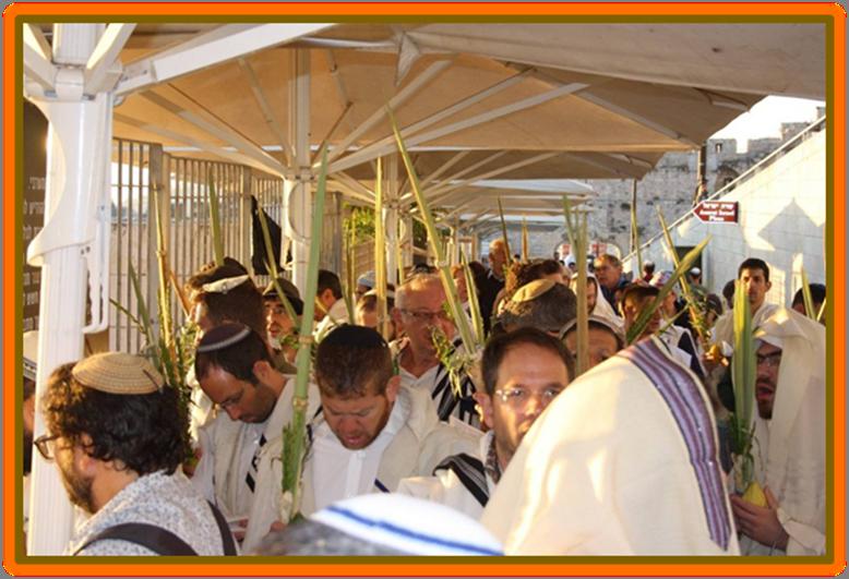 """Religious Jewish men """"Four Species"""" of Sukkot Mughrabi gate"""